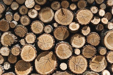 Natürlich heizen mit Holz